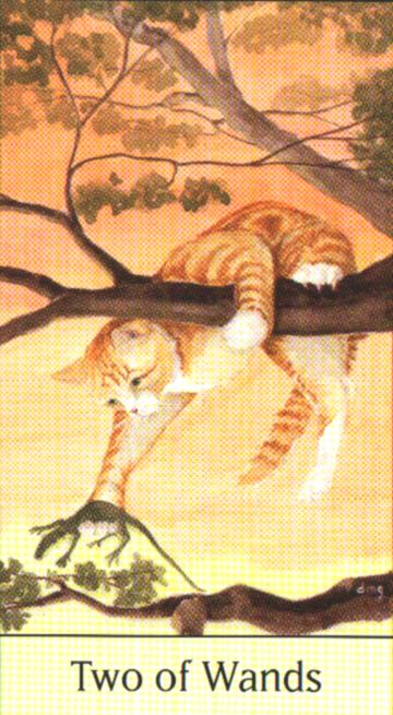 牌卡中还有其他的爬行类动物,鱼类,鸟类及小老鼠取代通常的符号.