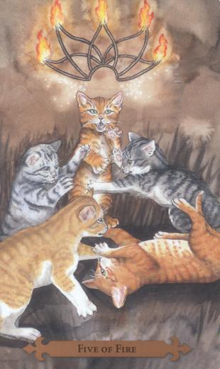 神秘猫塔罗牌